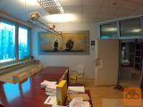 Celje pisarna 110 m2