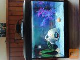 25 l akvarij