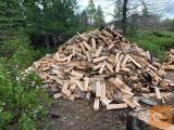 Kakovostni kurilni les / hrastov les / bukev