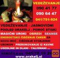 POGLED ZA PRIHODNOST ZA LJUBEZENSKO 0904177