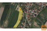 Središče ob Dravi 6156 m2